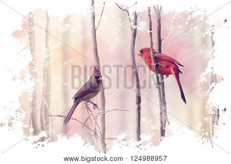 Digital Painting of  Northern Cardinals Perching on a Branch