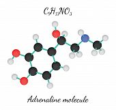 C9H13NO3 adrenaline 3d molecule isolated on white poster