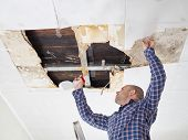 man cleaning mold on ceiling.Ceiling panels damaged  huge hole in roof from rainwater leakage.Water damaged ceiling . poster