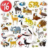 set of animals antelope, impala, snake, warthog, clown fish, grouper, fish, pelican, llama, husky, canadian goose, porcupine, walrus, iguana, heron, stork, badger, pheasant, rhinoceros, saiga, lemming poster