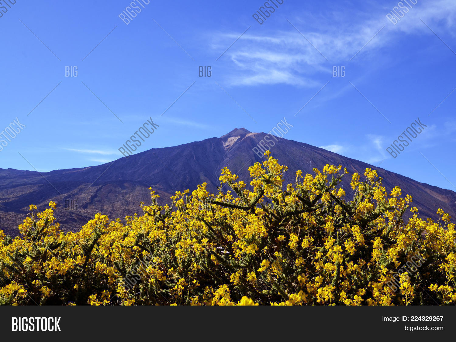 View Volcano El Teide Image Photo Free Trial Bigstock
