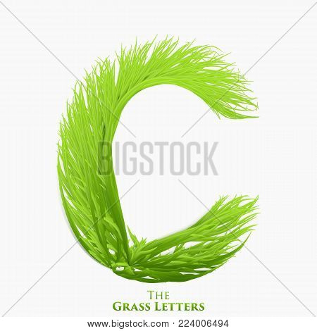 Vector letter C of juicy grass alphabet. Green C symbol consisting of growing grass. Realistic alphabet of organic plants. Spring and ecology typeset illustration