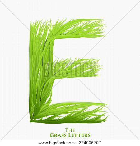 Vector letter E of juicy grass alphabet. Green E symbol consisting of growing grass. Realistic alphabet of organic plants. Spring and ecology typeset illustration