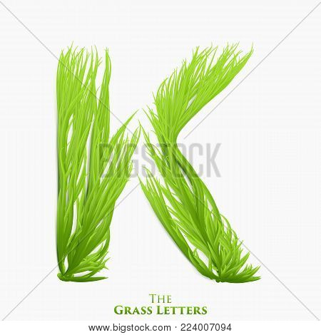 Vector letter K of juicy grass alphabet. Green K symbol consisting of growing grass. Realistic alphabet of organic plants. Spring and ecology typeset illustration