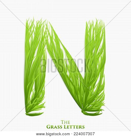 Vector letter N of juicy grass alphabet. Green N symbol consisting of growing grass. Realistic alphabet of organic plants. Spring and ecology typeset illustration