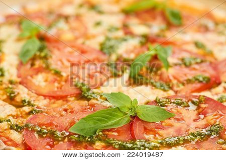 Close up juicy tomatoes and basil on pizza. Close up blurred pizza, pizza focus. Pizza backround.