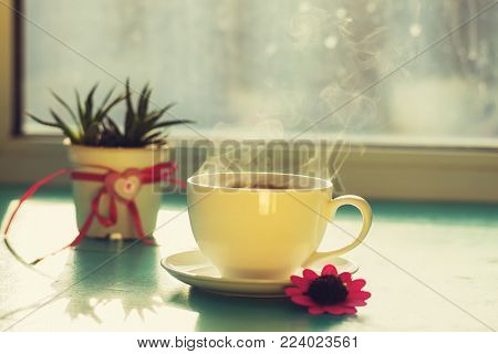 Valentine's Day, breakfast for your favorite - steaming cup of coffee stands on a green surface, next to a cactus with a heart symbol and a red flower on the window blurred background.
