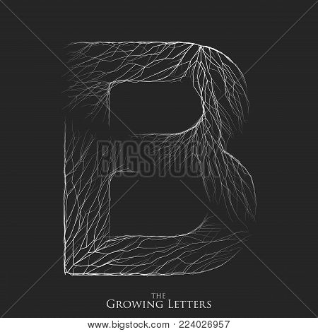Vector letter B of branch or cracked alphabet. B symbol consisting of growing white lines. Fractured letters. Lighting silhouet of capital letters. Abstract font