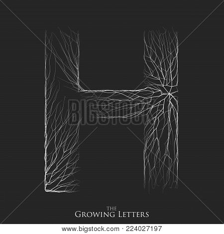 Vector letter H of branch or cracked alphabet. H symbol consisting of growing white lines. Fractured letters. Lighting silhouet of capital letters. Abstract font
