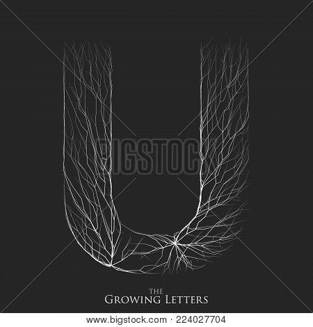 Vector letter U of branch or cracked alphabet. U symbol consisting of growing white lines. Fractured letters. Lighting silhouet of capital letters. Abstract font