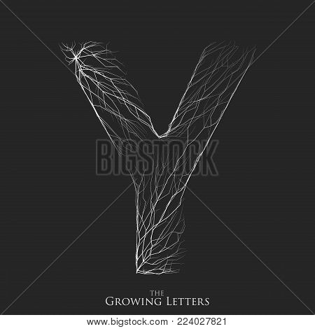 Vector letter Y of branch or cracked alphabet. Y symbol consisting of growing white lines. Fractured letters. Lighting silhouet of capital letters. Abstract font