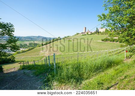 Barbaresco Town View. Vineyards From Langhe Region,italy Agriculture. Unesco World Heritage Site