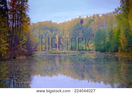 Beautiful views of autumn forest landscape near the river. Beautiful colorful forest reflected in the water of the river.