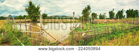 Beautiful rural landscape, pond on the foreground. Vang Vieng, Laos.Panorama