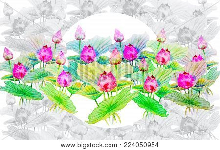 Watercolor painting on paper, happy postcard colorful of louts flowers and green  leaves in white background. Hand paintings illustration.