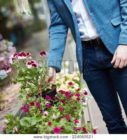 Man buying flowers at florist.