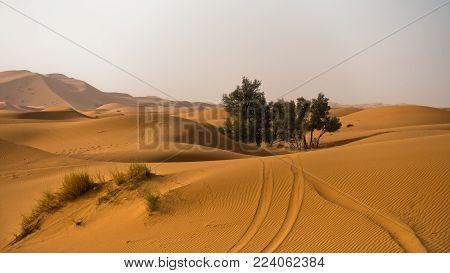 Sand dunes in Erg Chebbi at morning, Sahara desert, Morocco, Africa