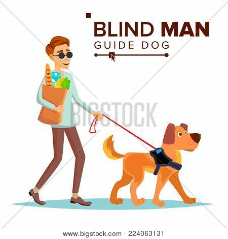 Blind Man Vector. Person With Pet Dog Companion. Blind Person In Dark Glasses And Guide Dog Walking. Isolated Cartoon Illustration
