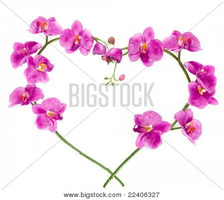 heart from pink orchids with space for your text