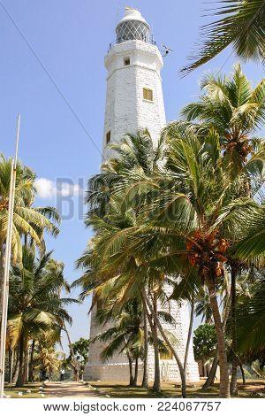 Sri Lanka. Dondra. White stone lighthouse on a stony-sandy beach among green palms. The road to the lighthouse.