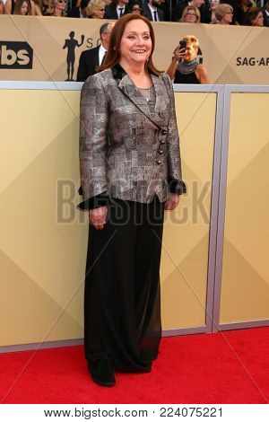 LOS ANGELES - JAN 21:  Dale Soules at the 24th Screen Actors Guild Awards - Press Room at Shrine Auditorium on January 21, 2018 in Los Angeles, CA