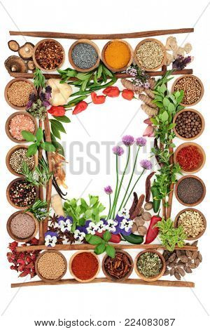 Spice and herb abstract border with fresh and dried herbs and spices and cinnamon sticks forming a frame on white background.