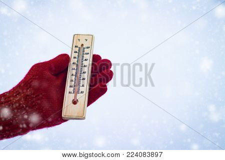 Thermometer In The Snow. In The Background, Spruce In The Snow. Winter