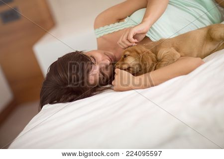 Puppy Cocker Spaniel with female owner cuddle in comfortable bed