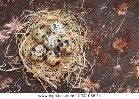 Easter Eggs in bird Nest on Rustic Metal Background.