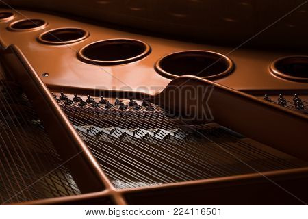Detail view of the interior of a grand piano, strings body