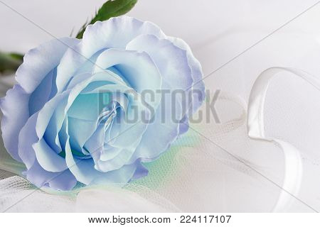 This Image Contains A Diamond Ring, Located Near The White Flower. Excellent Image, Symbolizing Love