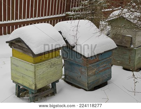 Old wooden beehives in a garden, covered with snow. Outside daytime shot