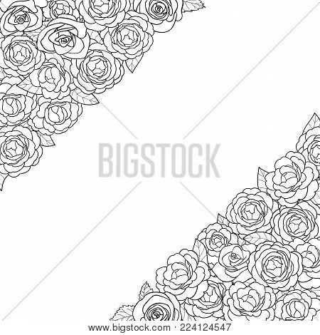Camellia outline angular composition on white background. Floral romantic A4 composition with text place for mock ups, invitation, greeting cards, valentines and coloring pages.