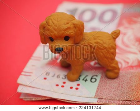 Blessings for Chinese New Year 2018 (also known as Lunar New Year). Cute little Dog on Red background centred standing on top of a pile of notes that look like Red Hong Kong $100 bills.