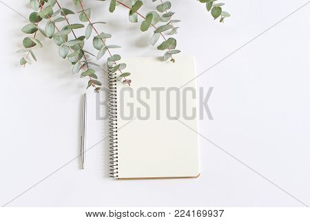 Styled stock photo. Feminine desktop mockup scene with green eucalyptus leaves, ballpoint pen and blank notebook isolated on white background. Empty space, top view. Picture for blog.