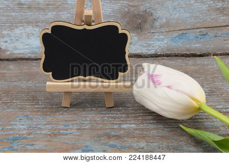mother's day concept image. Board with empty space for a text  and white tulips.
