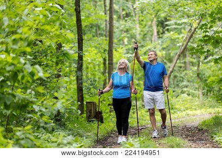 Elderly man and woman admiring views in the forest. Sportive lifestyle.