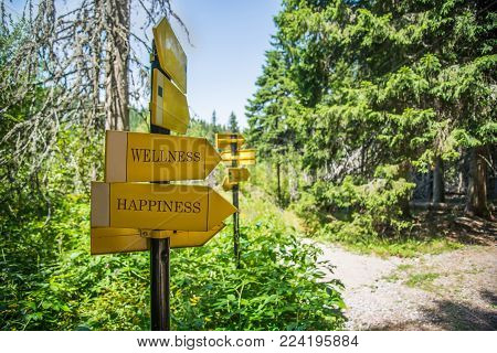 Hiking Signpost to Wellness And Happiness on a sunny day