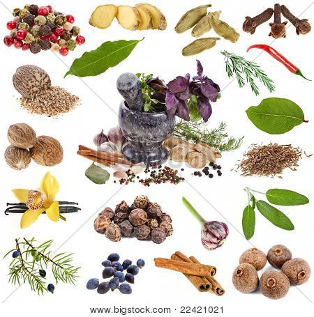 spices and aromatic herbs over white background