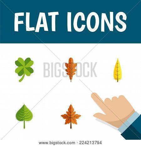 Icon flat leaf set of leaf, foliage, frond and other  objects. Also includes leaf, foliage, aspen elements.