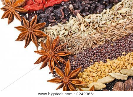 Indian different spices on white