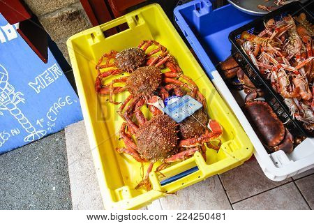 TREGUIER, FRANCE - JULY 2, 2010: local atlantic crabs on outdoor fish market in Treguier town in summer. Treguier is port town in the Cotes-d'Armor department in Brittany
