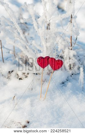 Valentina's day consept. Nice red hearts staying in white winter snow. Vertical photo