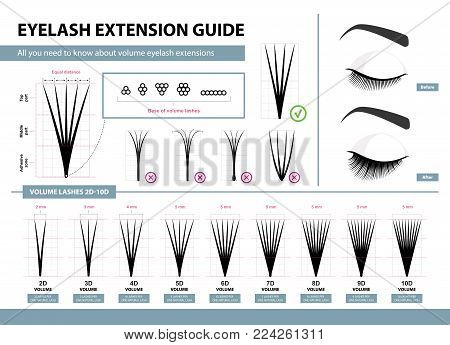 Eyelash extension guide. Volume eyelash extensions. 2D - 10D Volume. Tips and tricks. Infographic vector illustration. Template for Makeup and cosmetic procedures. Training poster