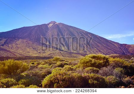 View of volcano El Teide is the highest point above sea level in the islands of the Atlantic.Mount Teide in spring.Teide National Park,Tenerife,Canary Islands,Spain.
