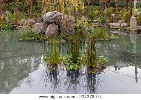 Pond in the New Square of Sochi. Russia
