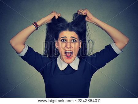 Stress. Woman stressed is going crazy pulling her hair in frustration. Closeup of young pissed off businesswoman isolated on gray background.