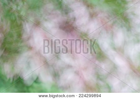 Blurry photo of flower with movement effect in pink and green colors. Abstract background with directional blur and motion effect using long exposure.