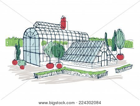 Freehand drawing of exterior of tropical botanical garden surrounded by bushes and trees growing in pots. Rough sketch of facade of glass greenhouse. Colorful hand drawn vector illustration