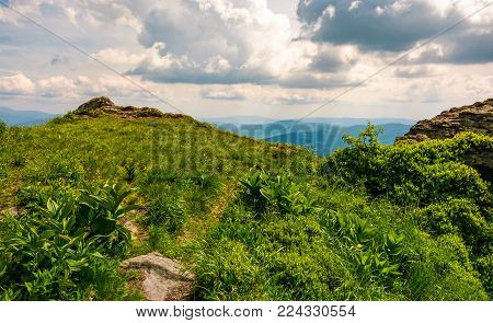 grassy edge of a hill. beautiful summer scenery in mountains